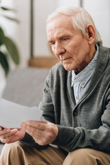 retired man with grey hair looking at photos at home