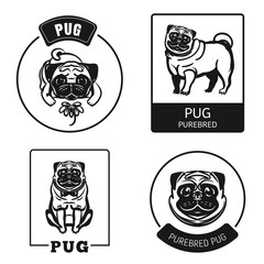 Pug icon set. Simple set of pug vector icons for web design on white background