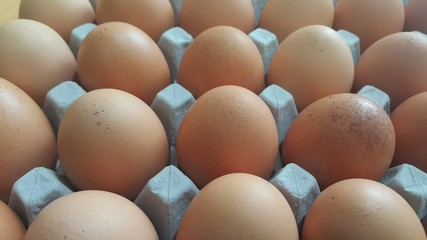 Fresh farm chicken eggs in an egg-carton or egg holder placed in market for sale