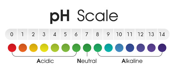 The chart shows the Acidic Neutral and Alkaline pH of various liquids and solvents. Vector Illustration.