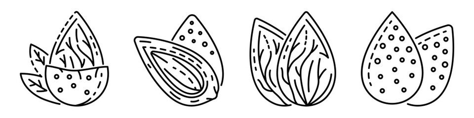 Almond icon set. Outline set of almond vector icons for web design isolated on white background