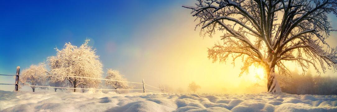 Panorama von stimmungsvoller Winterlandschaft