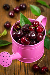 Cherry in Watering Can. Selective focus.