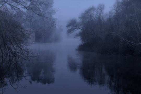 Foggy forest river at night
