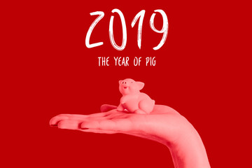 Chinese new year pig 2019 isolated hand hold blue background saving lunar symbol asia red