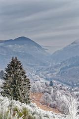 Village des Vosges givré