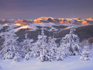 Winter in Pokutski Mountains, Ukraine