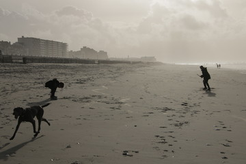 Family with kids and dogs in Normandy beach Le Touquet at winter