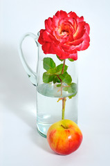 rose Apple still life