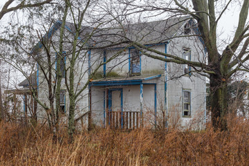 Abandoned house surrounded by barren trees and yellow grass
