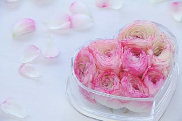 ハートの入れ物に入れたピンクのラナンキュラス