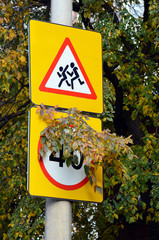 """Road signs """"Children"""" and """"Maximum speed limit 40 km / h"""" (covered by a tree branch) on a pole"""