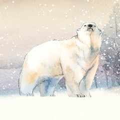 Wall Mural - Hand-drawn polar bear in the snow watercolor style vector