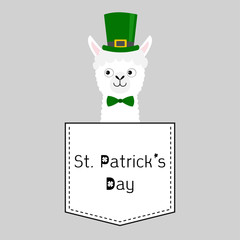 St Patrick Day. Llama alpaca face head in the pocket. Green hat. Cute cartoon animals. Kawaii character. Dash line. White and black color. T-shirt design. Baby gray background. Flat design.