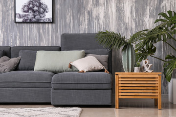 Stylish interior of living room with comfortable grey sofa Fototapete