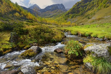 Brook in Caucasus