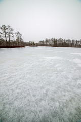 walking on a frozen forest lake with no snow