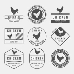 Set of premium chicken labels, badges and design elements. Vector Illustration. Chicken logo.