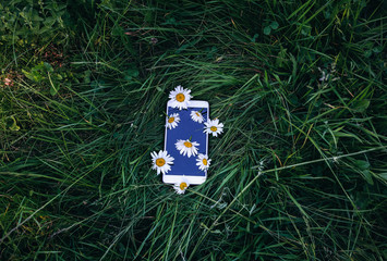 White smartphone with camomile flowers is lying on the grass. Green photo summer concept. Nature and new technologies love idea.