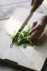 Close up of woman's hand cutting parsley