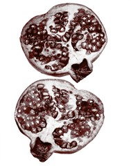 Close up of cross sections of pomegranate