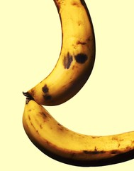 Close up of bananas against white background
