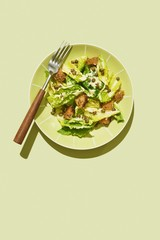 Overhead view of salad served on plate against green background