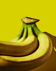 Close up of bananas against yellow background