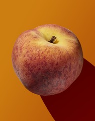 Isolated apple isolated on orange background