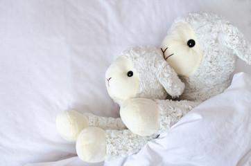 Fond de hotte en verre imprimé Sheep Two sheep lying in the bed