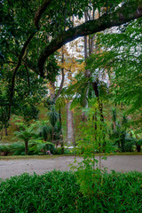 Beautiful Terra Nostra Botanical Park with Thomas Hickling Yankee Hall Summer House, Azores