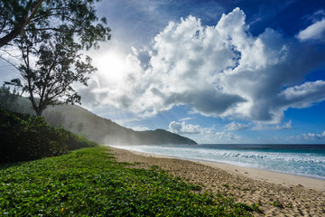 wild tropical beach at police bay on the seychelles 2