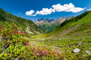 Beautiful summer mountains landscape in Stubai Tyrol Alps near New Regensburger mountain hut, Austria