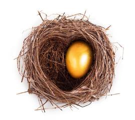 Golden egg in the nest. Nest in the shape of a heart.