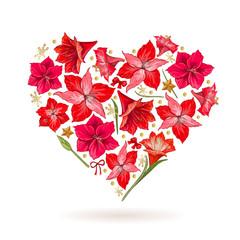 Hand drawn heart of Hipeastrum flowers. Card Valentine's Day