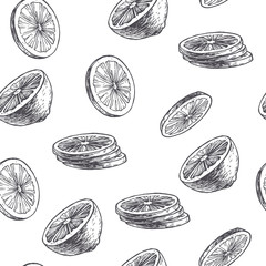Vector vintage seamless pattern with lime isolated on white. Hand drawn texture with citrus slices in engraving style. Fruit rounds sketch.