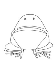 cute cartoon  frog  animal illustration coloring drawing line
