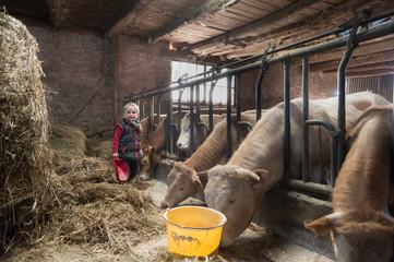 Des enfants donnent à manger à des vaches dans une vieille ferme