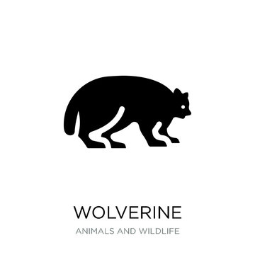 wolverine icon vector on white background, wolverine trendy fill