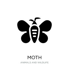 moth icon vector on white background, moth trendy filled icons f
