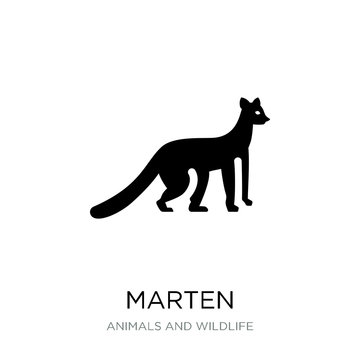 marten icon vector on white background, marten trendy filled ico