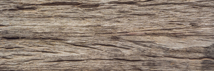 Very Old Wood Background, closeup. wood texture BANNER, LONG FORMAT
