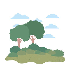 trees plants with landscape isolated icon