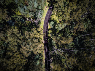 An aerial shot of a road snaking its way through the Yarra Valley Wine Region, in Victoria, Australia