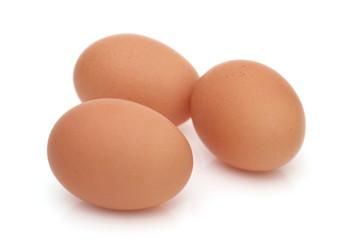 卵 タマゴ 食べ物