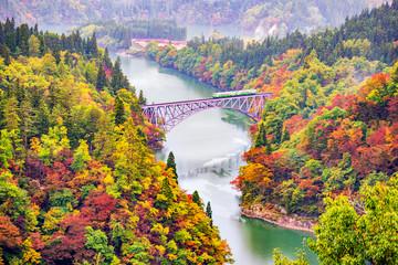 JR Tadami Line Train on the Bridge across Tadami River with Colourful Maple Tree on Hillside in Autumn, Fukushima, Japan