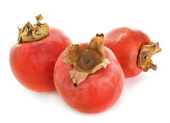 mature Persimmon in studio