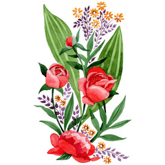 Red peony and rose botanical flowers. Watercolor background illustration set. Isolated ornament illustration element.