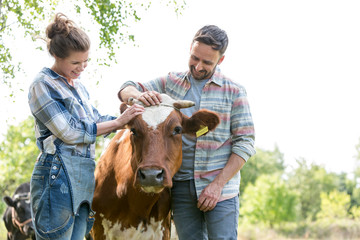 Smiling man and woman standing with cow at farm