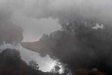 Fototapete - Nebel im Weinberg